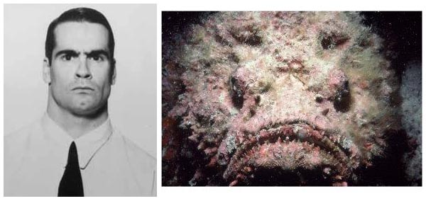 Top 10 musicians that resemble fish or amphibians feature for Fish that looks like a rock