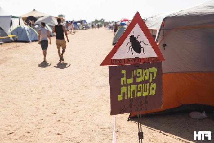 InDnegev Beetle